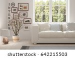 white room with sofa and green... | Shutterstock . vector #642215503