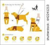 guide dog vector illustration...   Shutterstock .eps vector #642241213