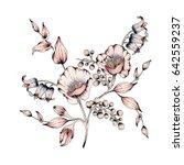 watercolor flower illustration | Shutterstock . vector #642559237
