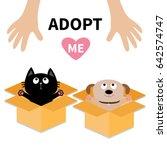 human hand. adopt me. dog cat... | Shutterstock .eps vector #642574747