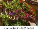 beautiful flowery terrace or...