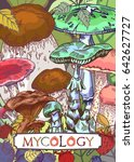 mycology cover illustration... | Shutterstock .eps vector #642627727