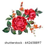 Stock photo bouquet of red roses and flowering quince branches watercolor painting on white background 642658897