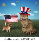 Stock photo the cat is wearing an american patriotic hat and bow tie his friend dog is next to an american 642985573
