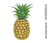 pineapple hand painted... | Shutterstock . vector #643050013