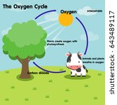 the oxygen cycle | Shutterstock .eps vector #643489117