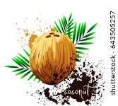 coconut with leaves isolated on ... | Shutterstock .eps vector #643505257