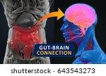 gut brain connection or gut... | Shutterstock . vector #643543273