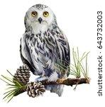 Snowy Owl Sitting On A Branch
