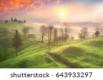 a gentle morning in the... | Shutterstock . vector #643933297