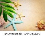 seashells on a summer beach and ... | Shutterstock . vector #644056693