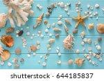Seashells Flat Lay Pattern On...