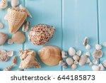 Seashells On Blue Wood  Sea...