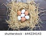 chicken eggs  eggs in the nest | Shutterstock . vector #644234143