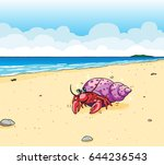 hermit crab on beach by the sea | Shutterstock .eps vector #644236543