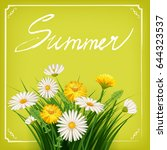 summer lettering hand drawn on... | Shutterstock .eps vector #644323537