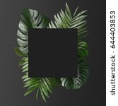 palm leafs background concept   Shutterstock . vector #644403853