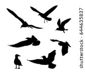 Vector Set Of Seagulls...