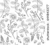 seamless floral vector pattern  ... | Shutterstock .eps vector #644843377