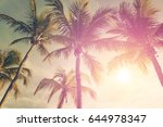 tropical landscape with palm... | Shutterstock . vector #644978347