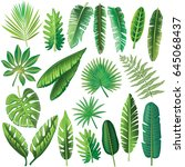 vector tropical leaves | Shutterstock .eps vector #645068437