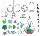 vector glass terrariums with... | Shutterstock .eps vector #645154723