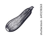 zucchini. hand drawing of... | Shutterstock .eps vector #645158263