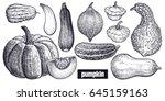 Various Of Pumpkin. Chayote ...