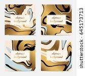 creative universal art posters. ... | Shutterstock .eps vector #645173713