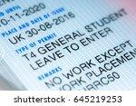 student visa uk. residence... | Shutterstock . vector #645219253