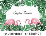 exotic tropic landscape border... | Shutterstock .eps vector #645385477