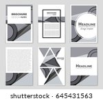 abstract vector layout... | Shutterstock .eps vector #645431563
