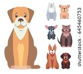 cute doggies cartoon set... | Shutterstock .eps vector #645460753