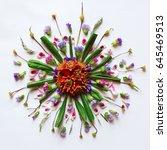 flower mandala flat lay...   Shutterstock . vector #645469513
