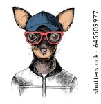 hand drawn toy terrier hipster. ... | Shutterstock .eps vector #645509977