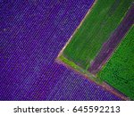 aerial view of lavender field. | Shutterstock . vector #645592213
