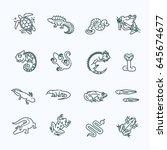 reptile and amphibian lizard ... | Shutterstock .eps vector #645674677