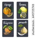 set of cards with citrus fruits.... | Shutterstock .eps vector #645725743