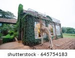 Small photo of Giraffe Manor at Nairobi Kenya