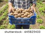 the farmer holding potatoes.... | Shutterstock . vector #645825433