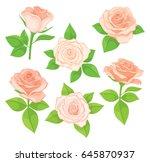 vector set of realistic ... | Shutterstock .eps vector #645870937