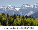 alpine in summer with snow | Shutterstock . vector #645899287