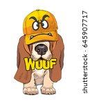 puppy basset hound in a yellow... | Shutterstock .eps vector #645907717