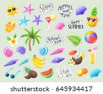 tropical summer stickers... | Shutterstock .eps vector #645934417