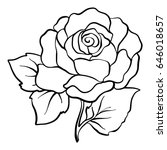 isolated rose outline drawing