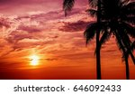silhouette coconut palm trees...   Shutterstock . vector #646092433
