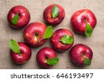 top view of group of eight... | Shutterstock . vector #646193497