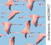 a flying flock of flamingo in...   Shutterstock . vector #646239817
