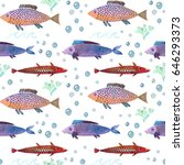 the colorful fish watercolor... | Shutterstock . vector #646293373