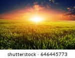 green field and beautiful sunset | Shutterstock . vector #646445773